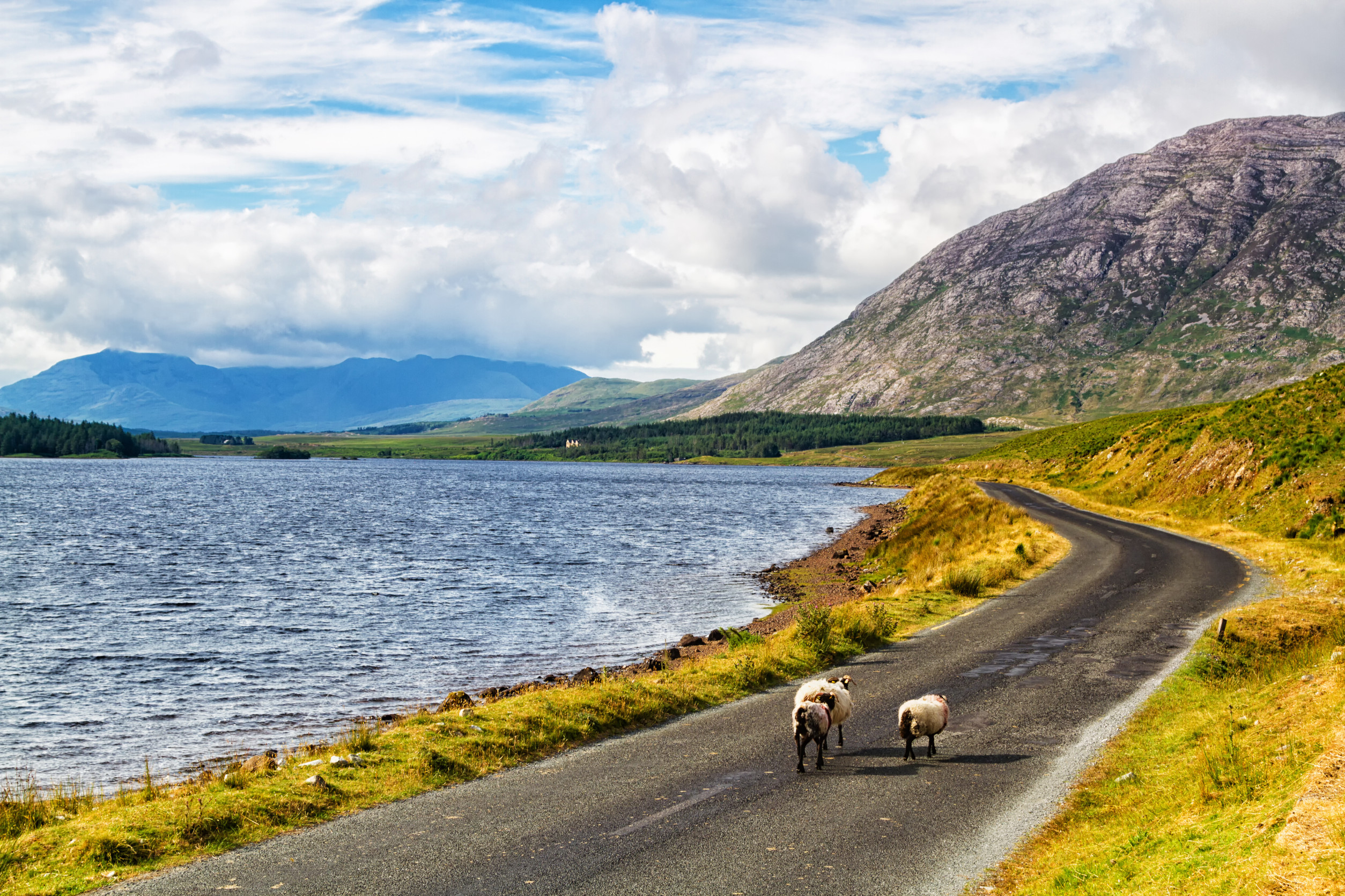 West Of Ireland And Connemara With Hillwalk Tours (37)